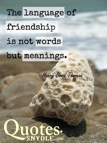 best-friendship-quotes-picture
