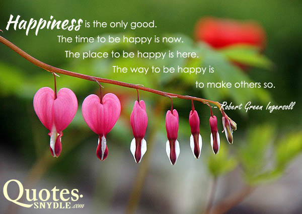 picture-of-happiness-quotes