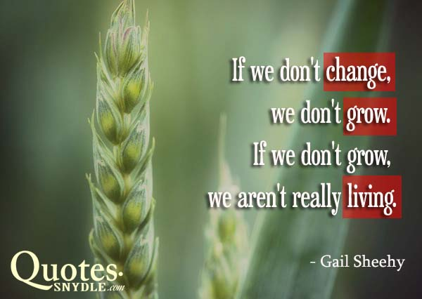 inspirational-quotes-about-change-picture