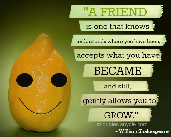 inspirational-quotes-for-friendship-image