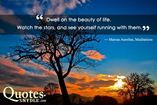 quotes-about-beauty-of-life