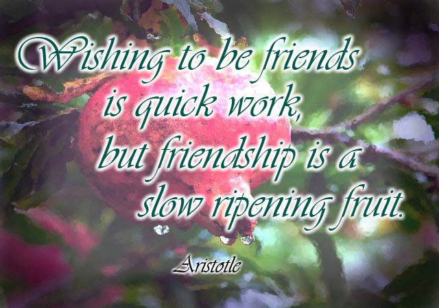 famous-quotes-about-friendship-with-picture