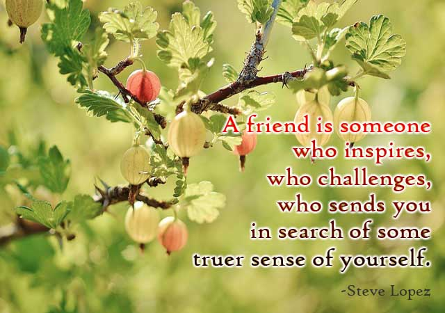 good-quotes-about-friendship