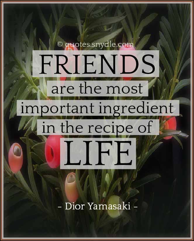 cute-new-friendship-quotes-and-sayings-with-picture