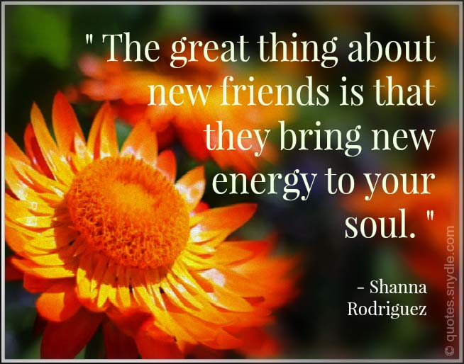 picture-more-new-friendship-quotes-and-sayings