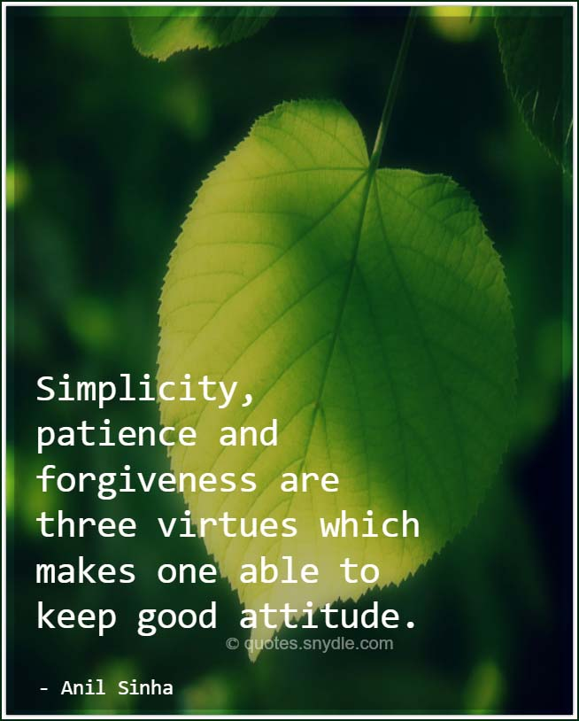 best-quotes-and-sayings-about-simplicity-with-image