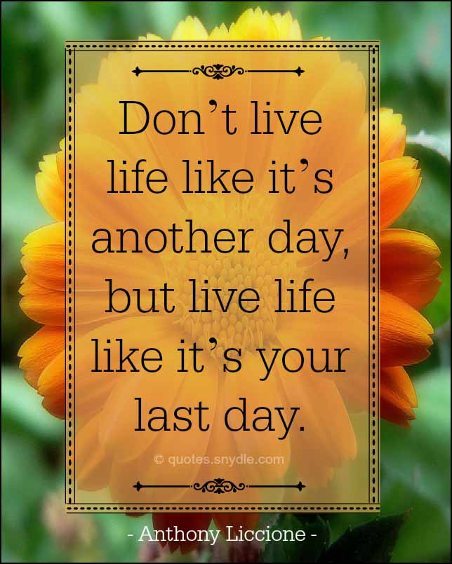 Live Your Life Quotes With Image Quotes And Sayings